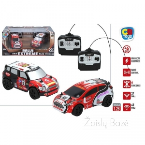 Automobiliai RC Rally Extreme 2 vnt